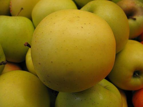 Manzana: la fruta prohibida.
