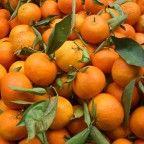frutas-organicas-mandarinas