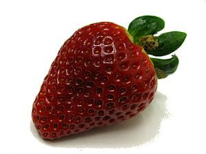 frutas-para-adelgazar-fresa