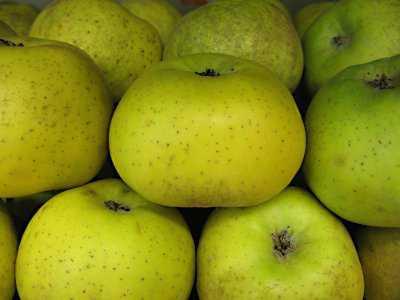 frutas-para-la-diarrea-manzana-reineta