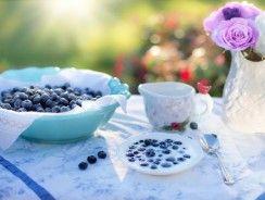 Arándanos secos: el poder de una baya hipercalórica