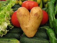 La patata: alimento principal del ser humano.